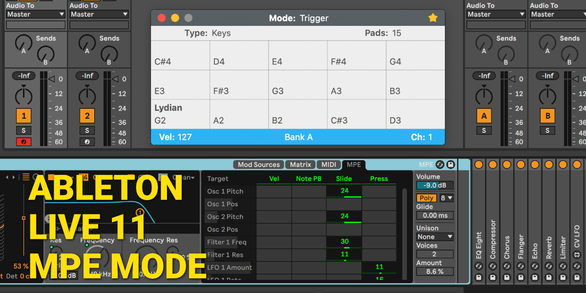 Ableton Live 11 in MPE Mode